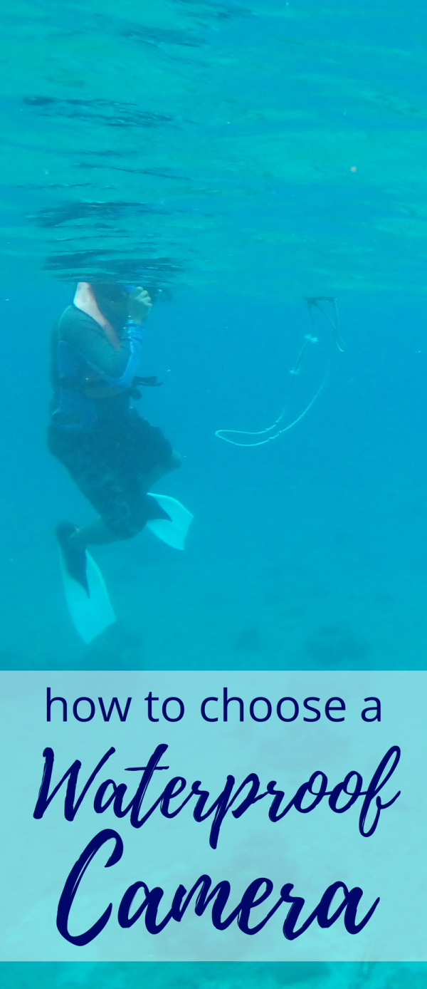 How To Choose Best Waterproof Digital Camera For Snorkeling And Outdoor Travel