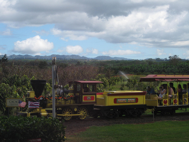 Things to do in Oahu: Dole Pineapple Plantation train ride! Hawaii
