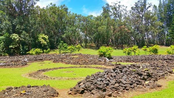 Aiea Loop Trail: At Keaiwa Heiau State Park in Oahu, Hawaii