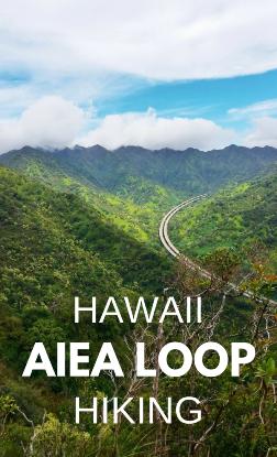 Aiea Loop Trail: Oahu hikes, Hawaii