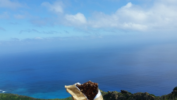 How to get to Koko Head Trail by bus: Take snacks with you to refuel yourself at the Koko Crater summit!