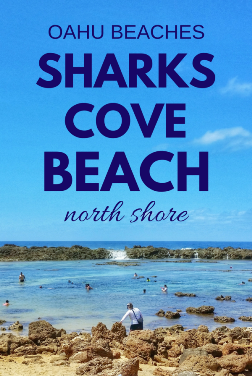 Shark's Cove: Things to do at Shark's Cove on the North Shore of Oahu, Hawaii