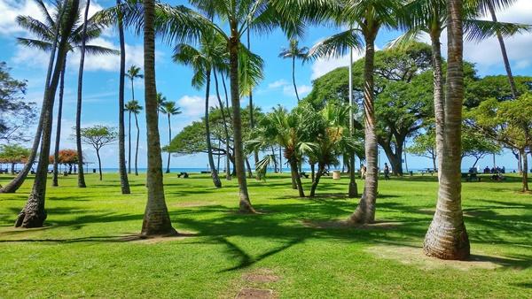 Waikiki Snorkeling: By Queen's Beach in Waikiki is Sans Souci Beach Park in Oahu, Hawaii