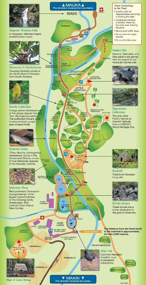 Waimea Valley botanical gardens map: Nature walk near Waimea Beach Oahu