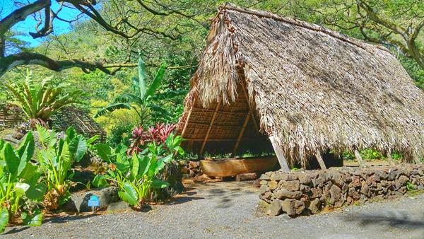 Hawaiian culture: Kauhale ancient Hawaiian living site in Waimea Valley on the North Shore, Oahu, Hawaii