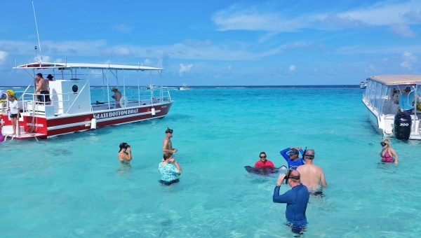Stingray City Grand Cayman: On stingray city tours, your guide will show you how to hold a stingray