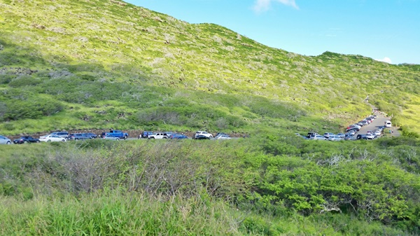 Whale watching Oahu: Parking at Makapuu Lighthouse Trail, where might go for whale watching during whale season as an alternative to whale watching tours in Oahu.