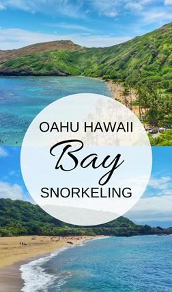 Oahu snorkeling bay: Best beaches for snorkeling in Oahu, Hawaii