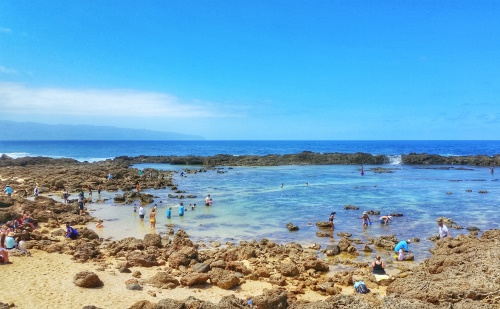 Shark's Cove snorkeling rental: Prices of renting snorkeling gear at Shark's Cove with a rocky beach entrance on the North Shore, Oahu, Hawaii