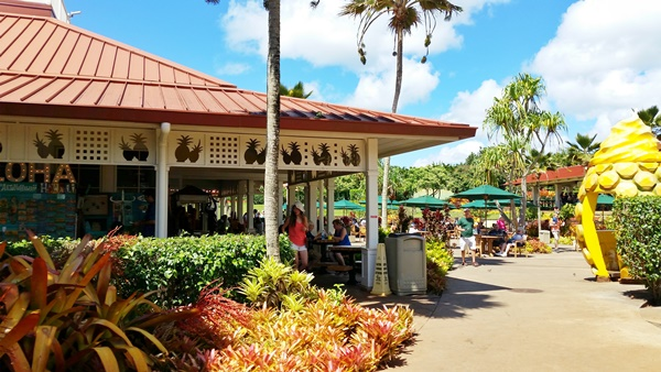 Getting around Oahu by bus: How to get to Dole Plantation by bus from Waikiki, Hawaii