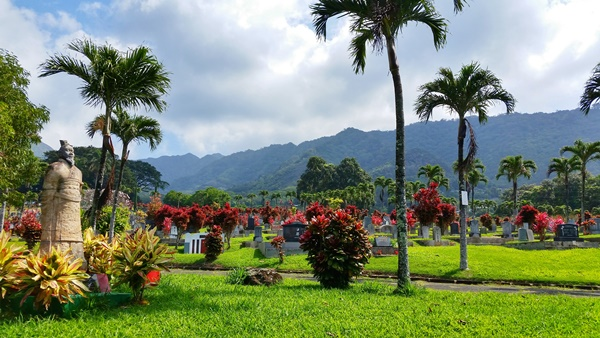 How to get to Manoa Falls by bus: Near Chinese cemetery in Manoa, Oahu, Hawaii