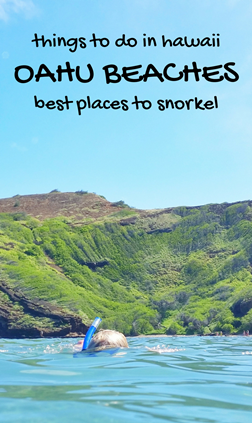 Snorkeling Oahu: Best place to snorkel in Oahu, Hawaii