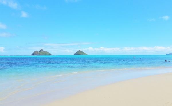 Oahu Circle Island Bus Tour