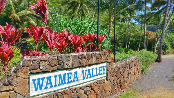 Waimea Valley: North Shore, Oahu, Hawaii