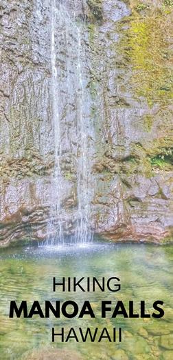 Manoa Falls Trail: Waterfall hike in Oahu, Hawaii