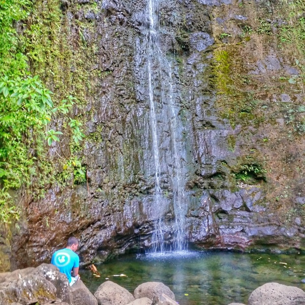 Manoa Falls Trail    Best waterfall hikes on Oahu    Hawaii