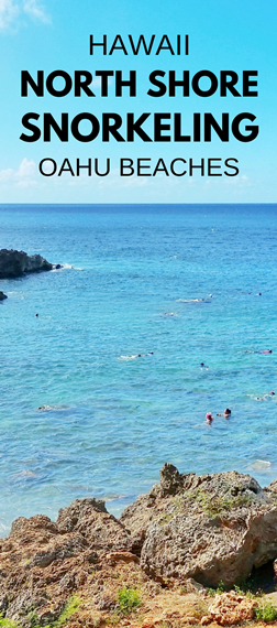 North Shore Snorkeling: Best Spots To Snorkel On North