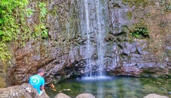 Oahu Hikes, Oahu travel guide: Manoa Falls Trail, Oahu hikes pocket guide, Hawaii