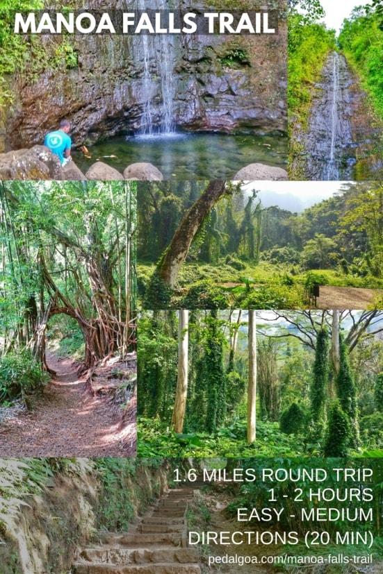 Best short hikes on Oahu, travel guide: Manoa Falls Trail, best waterfall hikes on Oahu, Hawaii