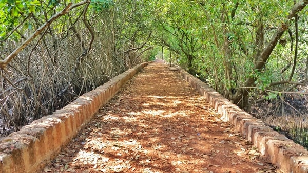 Dr Salim Ali Bird Sanctuary, Chorao Island, Central Goa: Best places to visit in Goa in one week, India