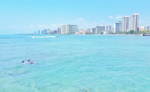 Waikiki Activities Travel Guide: Best snorkeling spot in Waikiki, Oahu, Hawaii. Best things to do in Waikiki.
