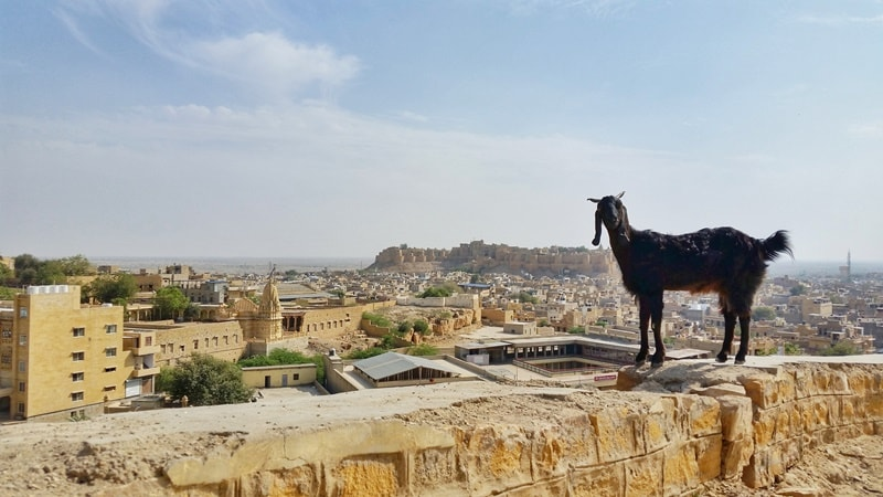 Jaisalmer itinerary, 2 days: Best views of Jaisalmer Fort near Hotel Tokyo Palace, sunset point. Best places to visit in Jaisalmer, Rajasthan, India.