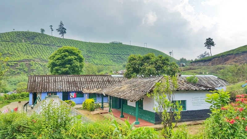 Munnar itinerary, 2 days: Munnar tea plantation walk through village. Best things to do in Munnar, Kerala, India.