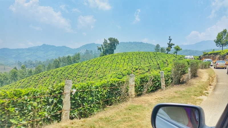 Munnar itinerary, 4 days: Munnar to Top Station, drive. Best things to do in Munnar, Kerala, India.