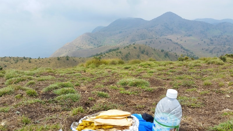 Munnar itinerary, 5 days: Meesapulimala Trek. Lunch food at 2nd highest peak in Kerala. Trek route. Best things to do in Munnar, Kerala, India.