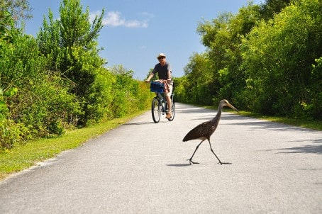 Biking in Florida USA
